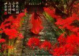 Một sắc đỏ thật diễm lệ~