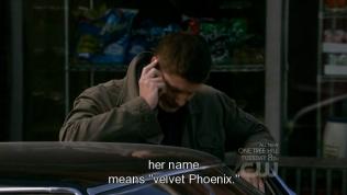 """""""Tên của cô ấy nghĩa là phượng hoàng như nhung"""" =)))))"""