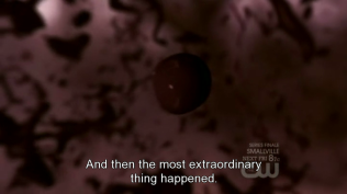 """""""Nhưng rồi điều kỳ diệu nhất đã xảy ra."""""""
