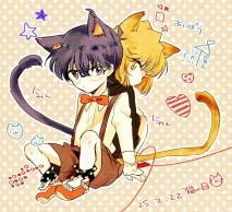 Mèo x Mèo ~