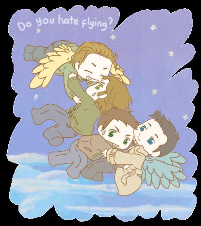 bạn có ghét bay không?