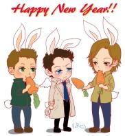 Mừng năm mới ~ *từ năm con thỏ rồi* =)))
